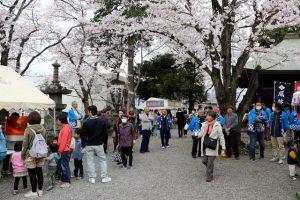 境内にある約20本のソメイヨシノの元での開催の様子(甲斐市サイトより)